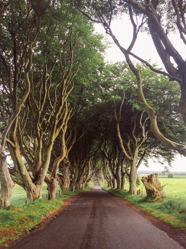 2015_Ireland-336