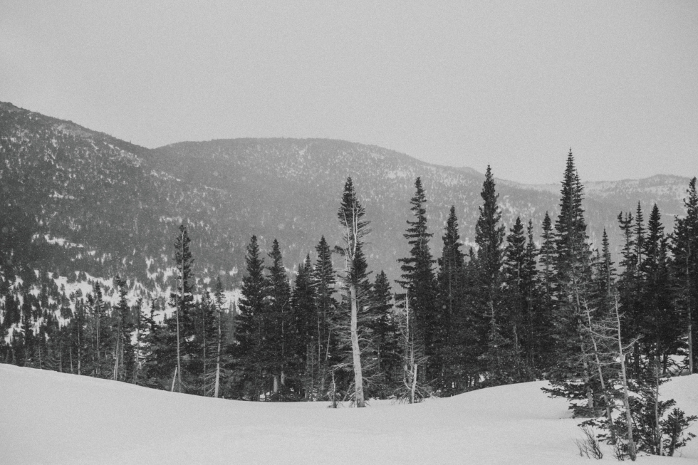 2017_colorado_blog-14